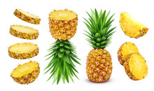 Pineapple Collection. Whole An...