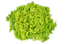 Lollo Bianco Lettuce Front Vie...