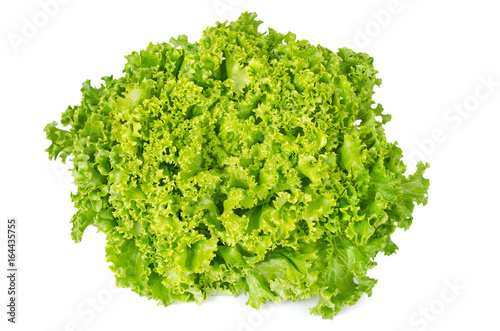 Lollo Bianco lettuce front view on white background Fototapete