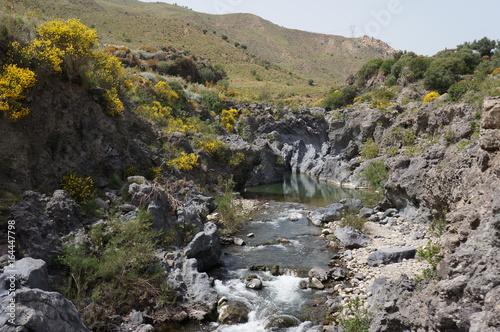 Fotografering Simeto river near Adrano, Sicily, Italy.