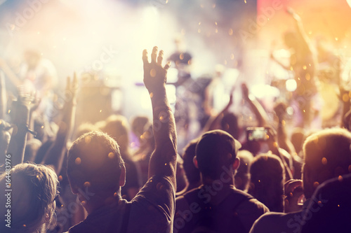 Photo Cheering crowd at a concert