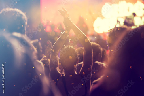 Cheering crowd at a concert Wallpaper Mural