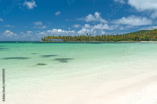 Foto op Plexiglas Caraïben Traumstrand auf der Halbinsel Samaná, Dominikanische Republik
