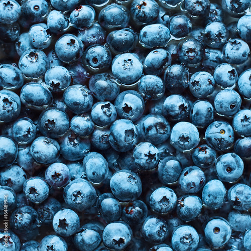 Fototapety, obrazy: food background of texture of blueberry