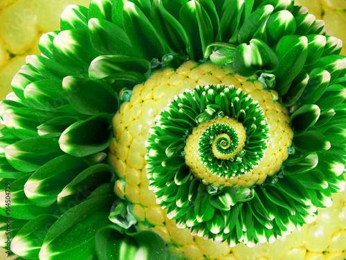 streszczenie-spirala-zolty