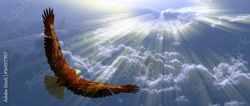 Foto op Plexiglas Eagle Eagle in flight above tyhe clouds