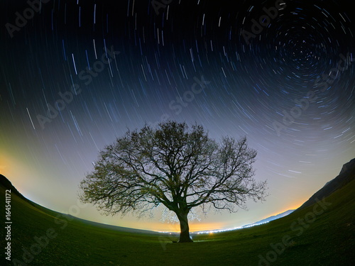 In de dag Nacht beautiful sky at night with startrails and silhouette of lonely tree on field