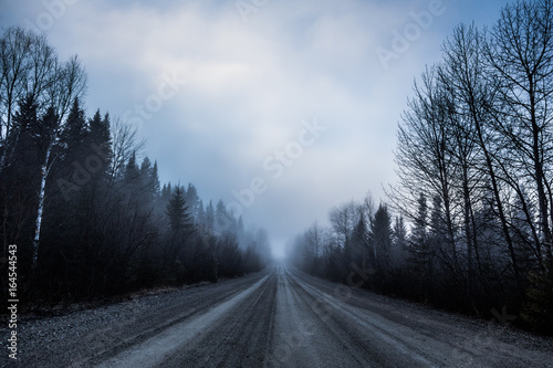 Fototapety, obrazy: Spooky Fog and Bad Visibility on a Rural Road in Forest