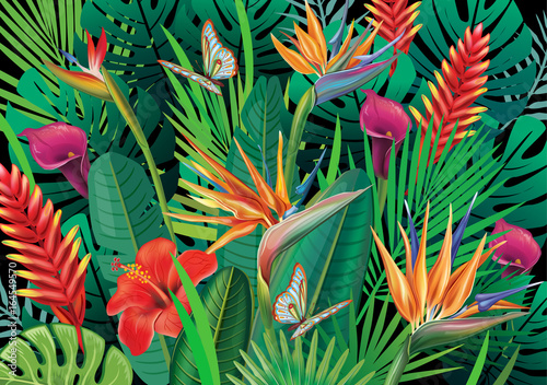 Background with exotic tropical flowers Fototapeta