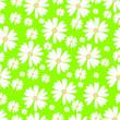 Leinwandbild Motiv Daisies on a green background. Vector background.