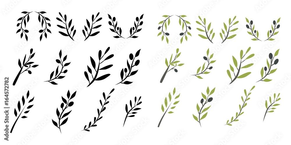 Fototapeta Olive brunch set. Digital illustration