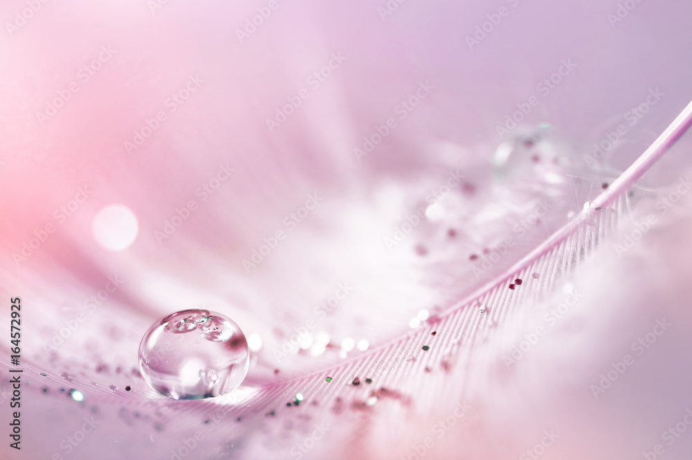 Fototapeta Feather pink bird with sparkles and transparent drop of dew water sparkles in the rays of bright light close-up macro. Glamorous sophisticated airy artistic image on a soft blurred background.