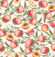 Hand-drawn Watercolor Seamless Pattern With Orange Fresh Peaches On The Branch And Flowers. Repeated Background