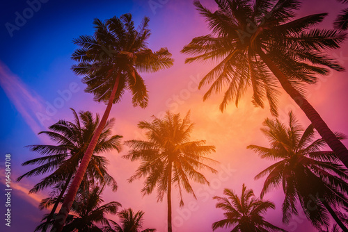 Foto auf AluDibond Hochrote Silhouette coconut palm trees on beach at sunset. Vintage tone.