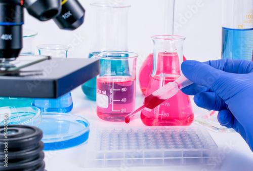 Fotografia, Obraz  scientist pipetting chemical liquid into 96 well micro plate
