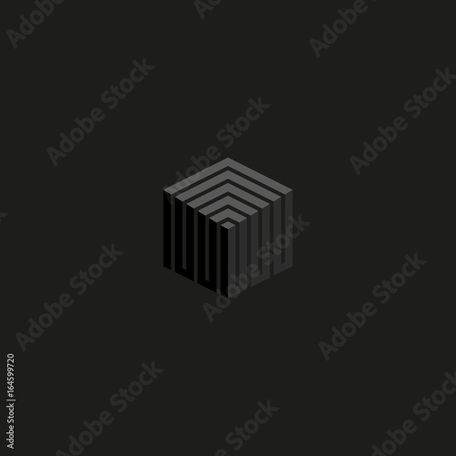 Isometric cube logo perspective lines construction, gray