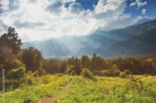 Poster Oceanië Beautiful landscape with summer meadow, mountains and sky