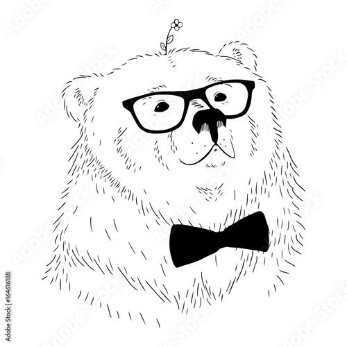 Photo sur Toile Croquis dessinés à la main des animaux Vector illustration hand drawn bear head.
