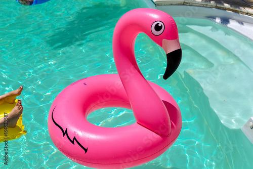 Garden Poster Flamingo Bouée flamant rose piscine