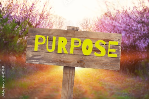 Photo  Purpose.