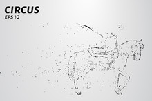 Circus Of The Particles. Girl On Horse Falls Apart Into A Molecule. Girl Performs Tricks On Horseback.