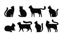 Cat Silhouette, Set Icons. Pet...
