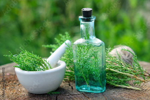 Bottle of juniper infusion or potion, mortar and Juniperus communis twigs Fotobehang