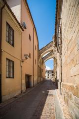 Fototapeta na wymiar Zamora, ciudad histórica y cultural, España.