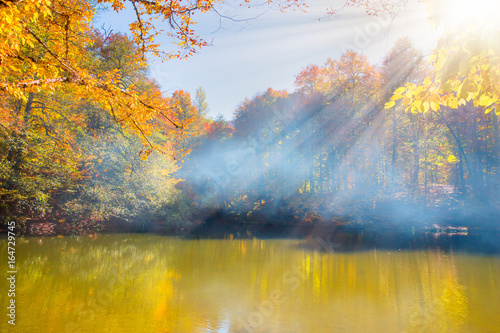 Papiers peints Forets Autumn landscape in (seven lakes) Yedigoller Park Bolu, Turkey