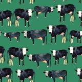 Ręka rysujący bezszwowy wzór z czarny i biały kinem. Krowa w akwareli. - 164772105