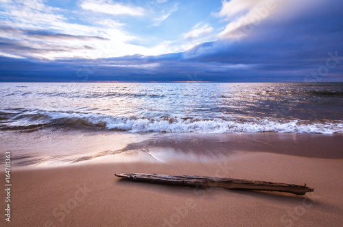 Fotografie, Obraz  Tranquil Sea with Driftwood