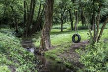 Car Tire Used As Swing On Tree...