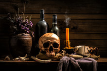 Still Life Skull , Bone ,Wine ...