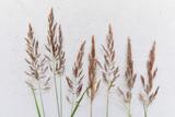 Kwiatowy wzór wykonany z polnych kwiatów