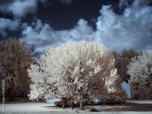 Cadres-photo bureau Bleu vert OLYMPUS DIGITAL CAMERA
