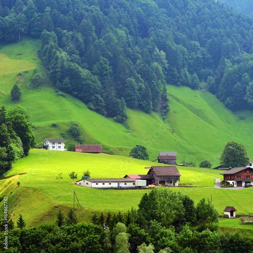 Poster Lime groen Stunning alpine landscape in canton Uri, Switzerland