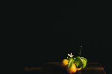 Still Life Fruits Dutch Painting Like