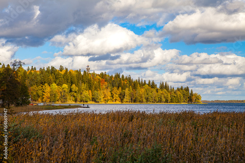 Foto op Canvas Herfst Fall forest behind the lake. Beautiful sky with sun and clouds. Autumn moment.