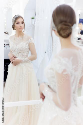Beautiful Cute Bride Girl In Tender Wedding Dress With Classic