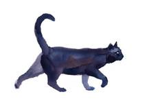 Black Cat Walking Watercolor H...