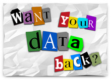 Want Your Data Back Ransom Not...