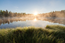 Small Forest Lake At Sunrise
