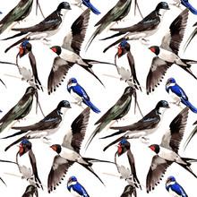 Sky Bird Swallows Pattern In A...