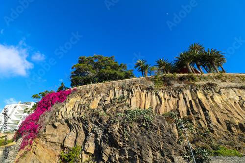 Photo  Die Hafenpromenade von Funchal auf der Insel Madeira