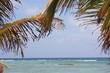 Karibisches Meer und Exotischer Ausblick