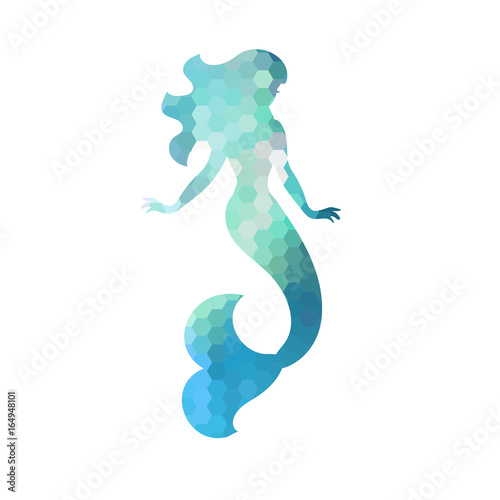 Canvas Print Silhouette of mermaid