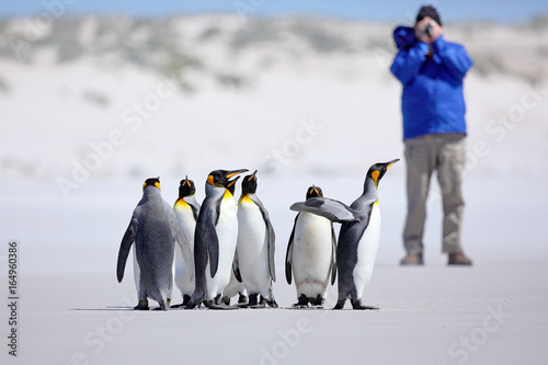 Photographer with Group of penguin Canvas Print