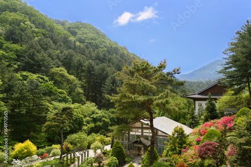 traditional korean garden with green house - Korean Garden