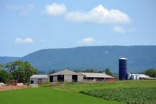 Rural Countryside Farm