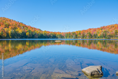Fotografie, Obraz  Fall Foliage Reflection On A Shallow Pond